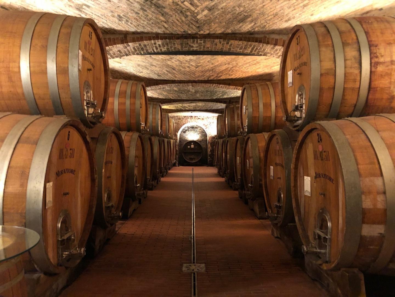 Fontanafredda|ピエモンテの伝統のワインが復活。フォンタナフレッダのワイナリーへ